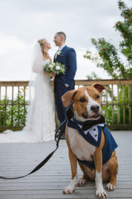 HUB 925 | Spring Wedding with Adorable Canine Ring Bearer at